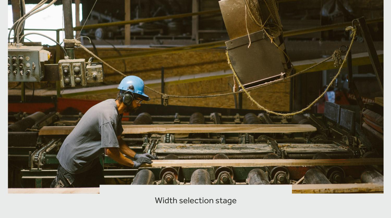 timberthane process width selection